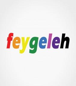 Feygeleh in Rainbow Colors Yiddish Israel Shirt