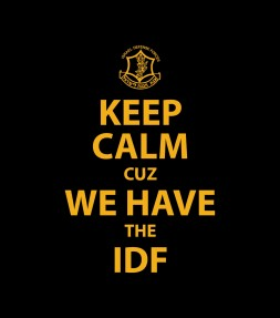Keep Calm cuz We Have the IDF Shirt