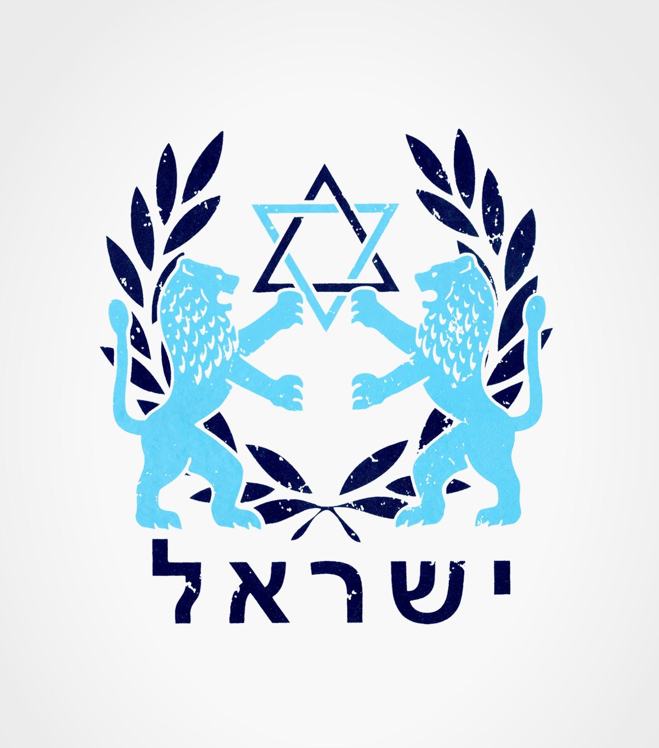 Israeli t home of israel tshirts israeli t lion of judah with star of david israel hebrew shirt biocorpaavc Image collections