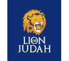 Lion of Judah Israel Shirt